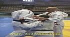 تقنيات وأسلوب عالي خلال التدريب الدولي في توحيد الكاطا في رياضة الجيدو