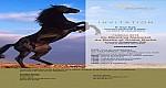 الشركة المغربية لتشجيع الفرس (سوريك) تضرب موعد مع الملتقى الوطني للخيول البربرية والعربية البربرية بالجديدة