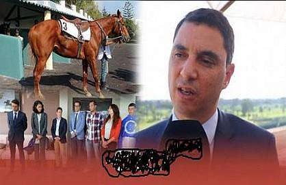 يومي 17و18 نونبر الحاليSOREC تضرب لكم موعدا تاريخيا بحلبة البيضاء انفا مع الدورة الرابعة للملتقى الدولي للخيول